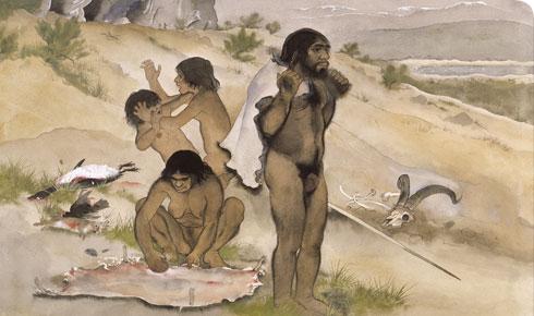Homo-neanderthalensis